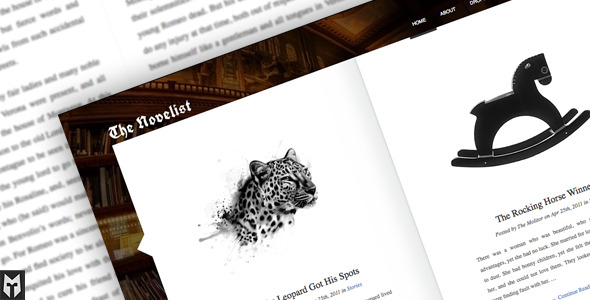 Novelist theme - one of the many premium WordPress themes available
